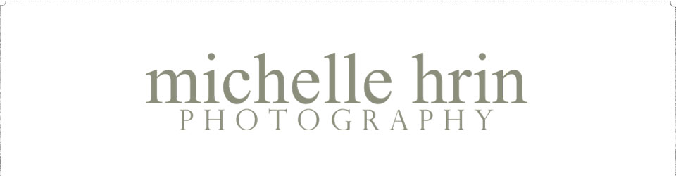 Michelle Hrin Photography logo